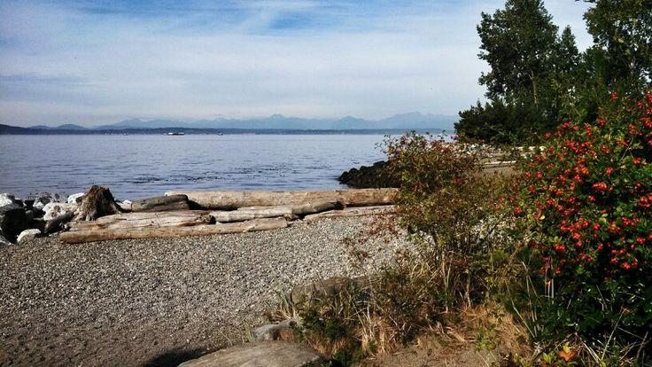 Beach along the Elliott Bay Trail - Seattle {Katie at the Kitchen Door}