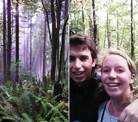 Hiking Cougar Mountain Park - Seattle