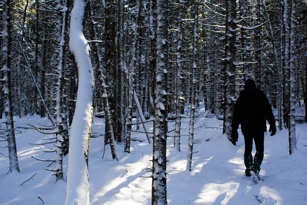 Winter in Maine {Katie at the Kitchen Door}