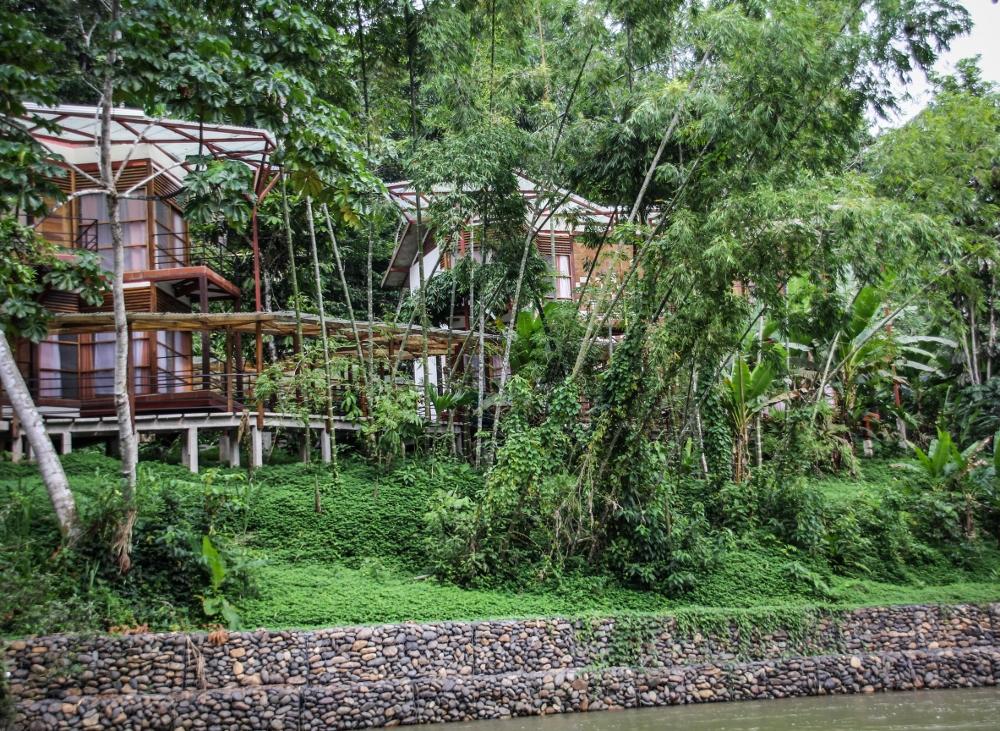 Ecuador Travelogue: The Amazon - Itamandi Lodge {Katie at the Kitchen Door}