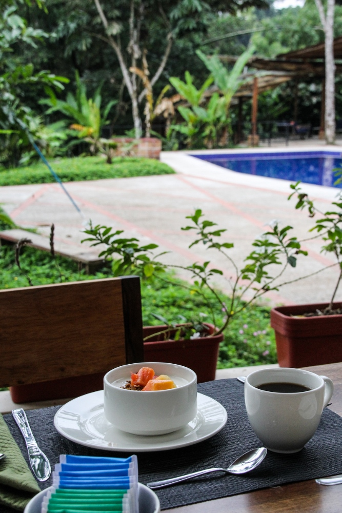 Ecuador Travelogue: The Amazon - Breakfast by the Pool at Itamandi Lodge {Katie at the Kitchen Door}