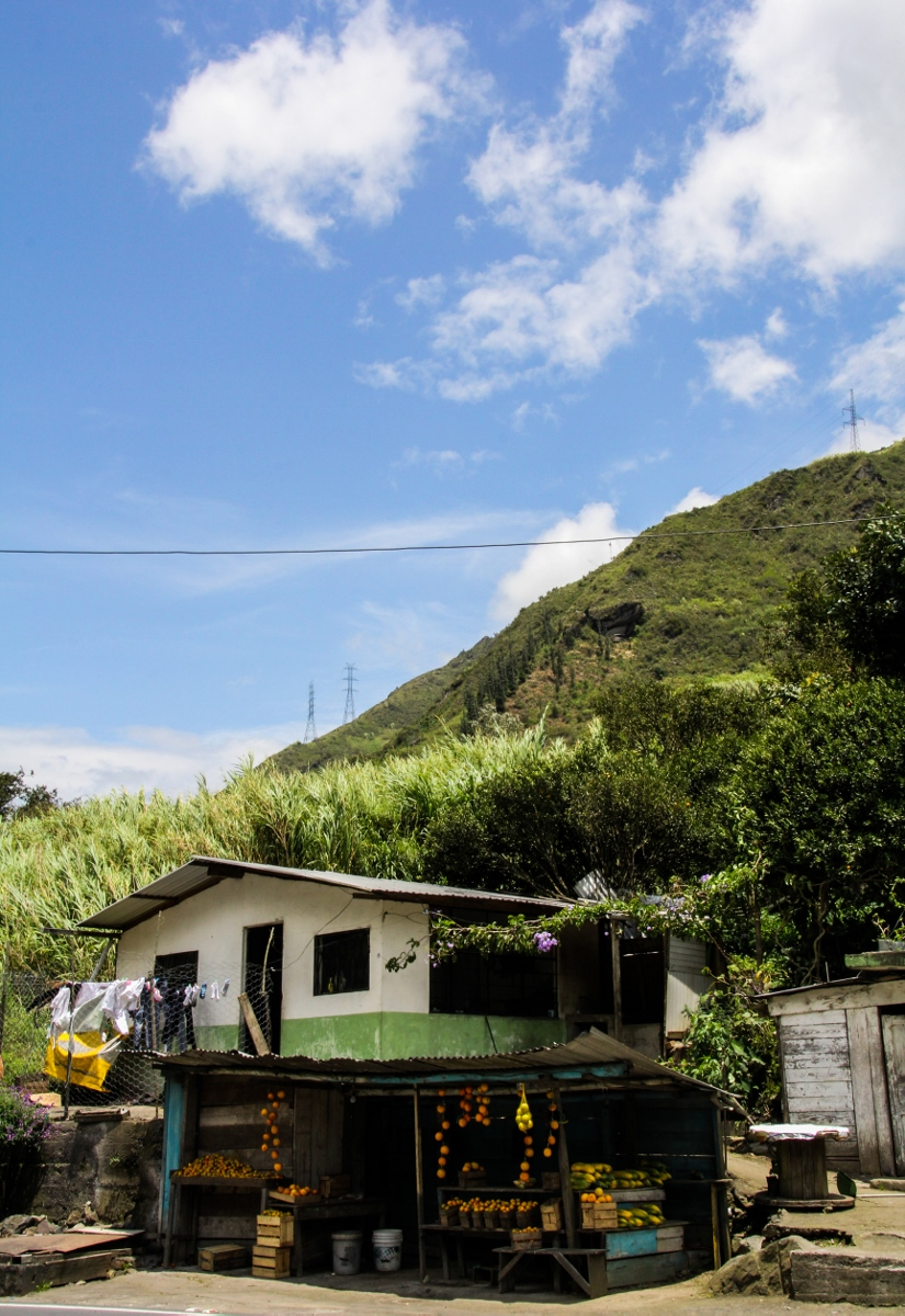 Roadside Fruit Stand, Baños, Ecuador {Katie at the Kitchen Door}