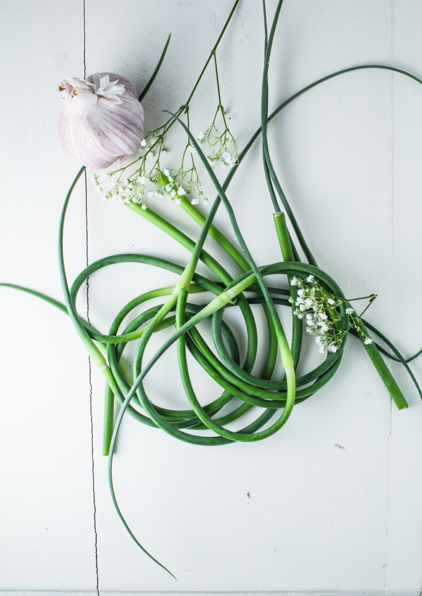 Garlic Scapes {Katie at the Kitchen Door}