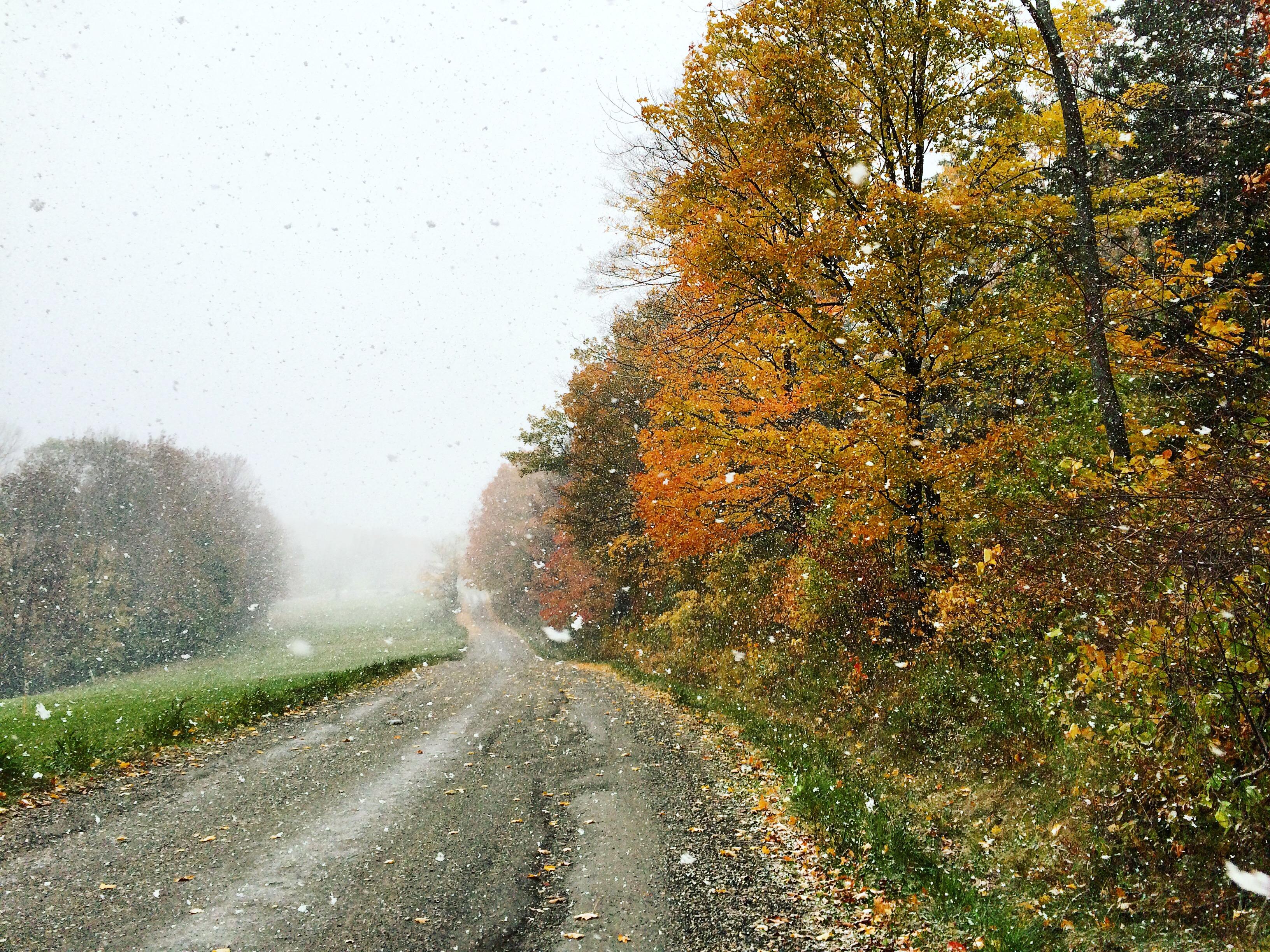October Snow, Vermont {Katie at the Kitchen Door}