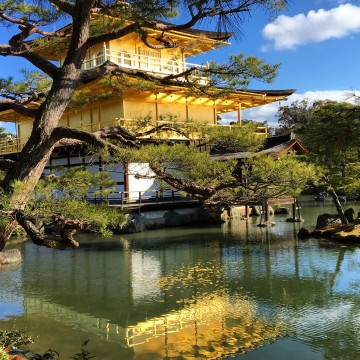 Kinkakuji Temple, Kyoto {Katie at the Kitchen Door} #Japan #travelogue