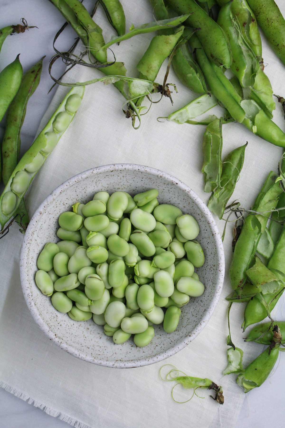 Fava Bean Recipes {Katie at the Kitchen Door}